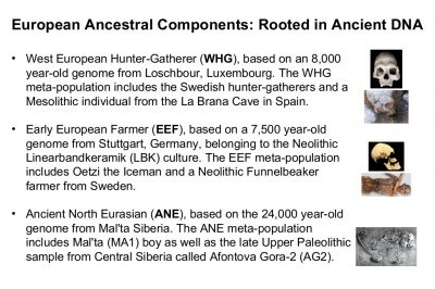 r1b-and-the-people-of-europe-an-ancient-dna-update-18-1024